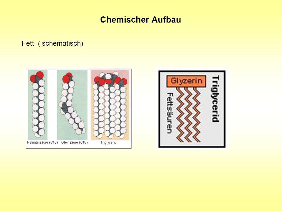 Chemischer Aufbau Fett ( schematisch)