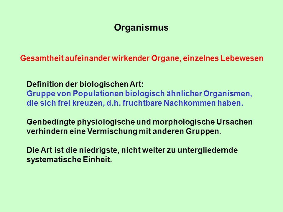 Organismus Gesamtheit aufeinander wirkender Organe, einzelnes Lebewesen Definition der biologischen Art: Gruppe von Populationen biologisch ähnlicher