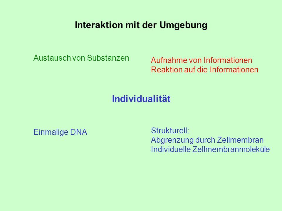 Interaktion mit der Umgebung Austausch von Substanzen Aufnahme von Informationen Reaktion auf die Informationen Einmalige DNA Strukturell: Abgrenzung