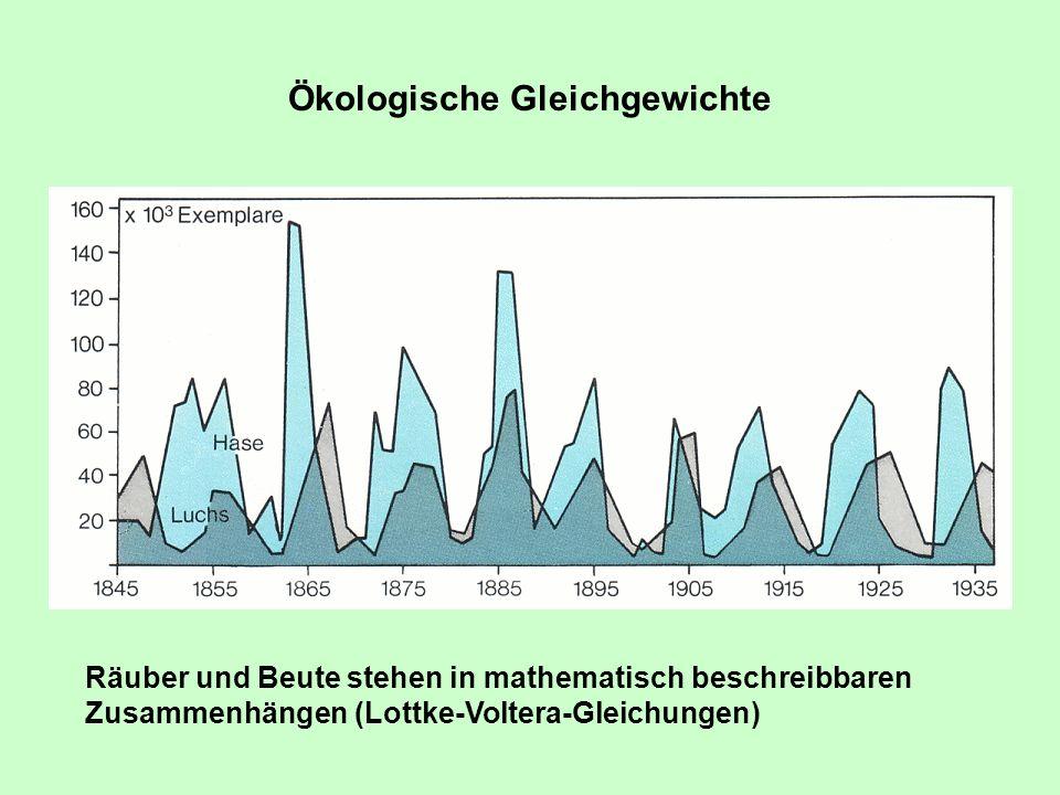 Ökologische Gleichgewichte Schneehase und Luchs in Nordamerika Räuber und Beute stehen in mathematisch beschreibbaren Zusammenhängen (Lottke-Voltera-G