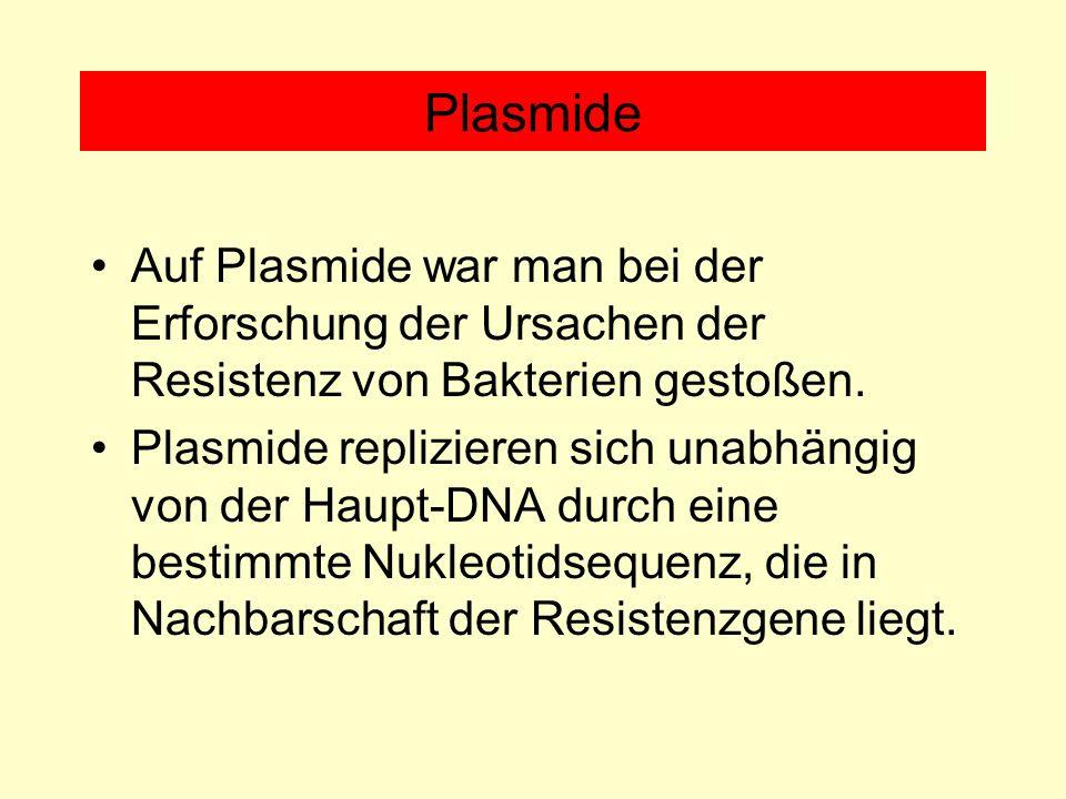 Plasmide Auf Plasmide war man bei der Erforschung der Ursachen der Resistenz von Bakterien gestoßen. Plasmide replizieren sich unabhängig von der Haup