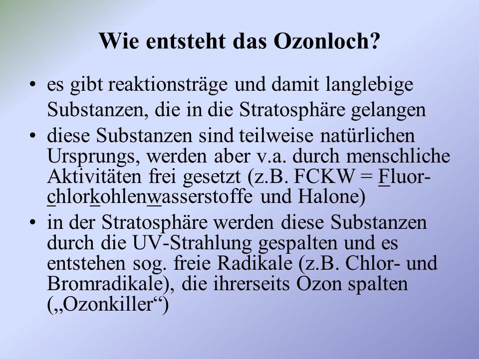Wo und wann entsteht das Ozonloch.