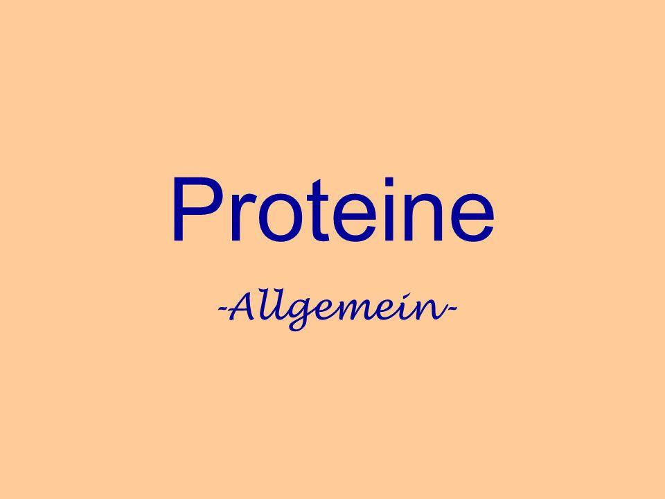 Proteine -Allgemein-