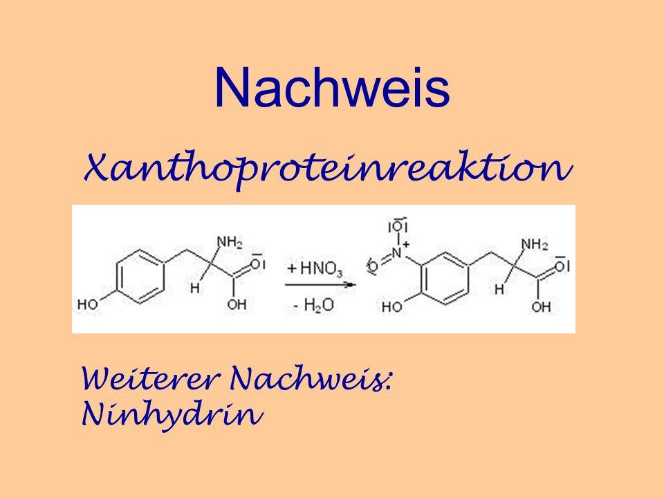 Nachweis Xanthoproteinreaktion Weiterer Nachweis: Ninhydrin