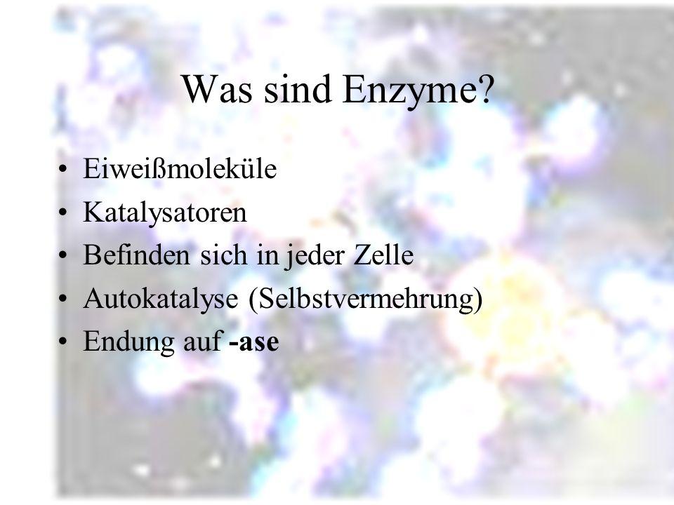 Gliederung Was sind Enzyme? Aufbau und Wirkungsweise Funktion (Katalysator) Beispiel