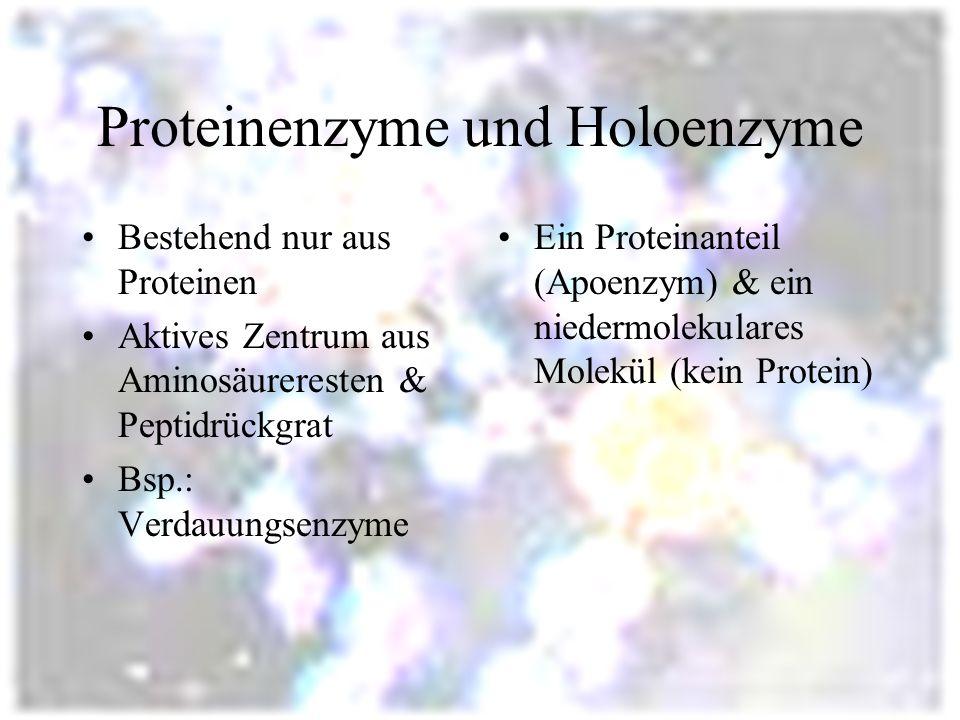 Proteinenzyme und Holoenzyme Bestehend nur aus Proteinen Aktives Zentrum aus Aminosäureresten & Peptidrückgrat Bsp.: Verdauungsenzyme Ein Proteinanteil (Apoenzym) & ein niedermolekulares Molekül (kein Protein)