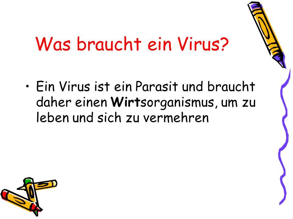 Was braucht ein Virus? Ein Virus ist ein Parasit und braucht daher einen Wirtsorganismus, um zu leben und sich zu vermehren