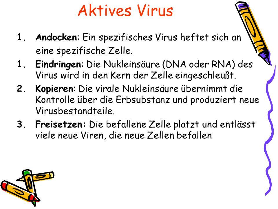 Wie antwortet unser Körper auf einen Virusbefall? Immunobiology, 5 th ed. Janeway