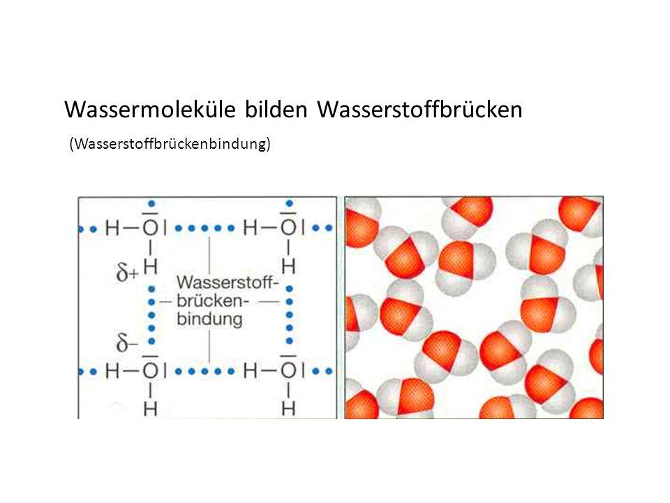 Salzlösungen Salze in Wasser löslich: I n 100 ml Wasser lösen sich......