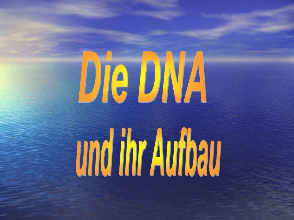 Was bedeutet eigentlich DNA.