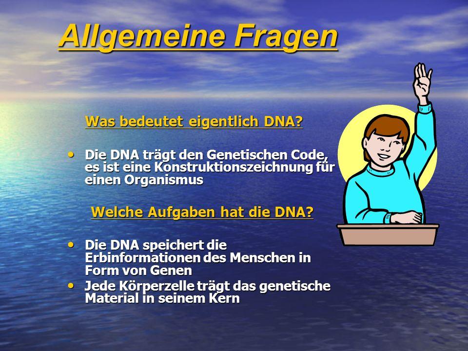 Was bedeutet eigentlich DNA? Die DNA trägt den Genetischen Code, es ist eine Konstruktionszeichnung für einen Organismus Die DNA trägt den Genetischen