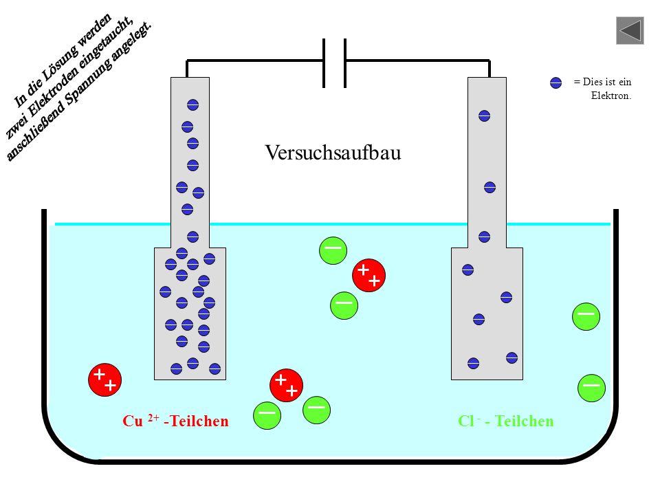 CuCl 2+ -Teilchen - LösungKupfer-II- chlor id - Das ist in der Lösung enthalten:
