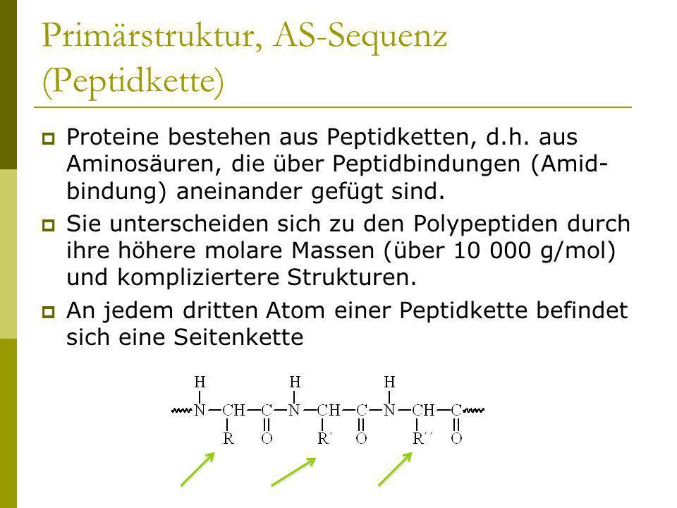 Primärstruktur, AS-Sequenz (Peptidkette) Proteine bestehen aus Peptidketten, d.h. aus Aminosäuren, die über Peptidbindungen (Amid- bindung) aneinander