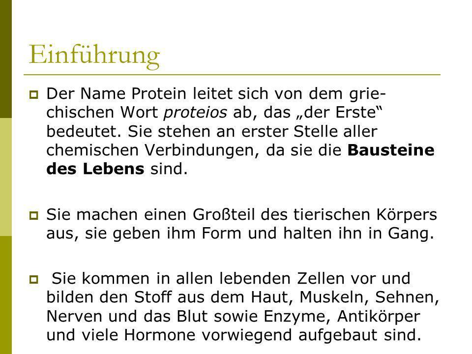 Einführung Der Name Protein leitet sich von dem grie- chischen Wort proteios ab, das der Erste bedeutet. Sie stehen an erster Stelle aller chemischen