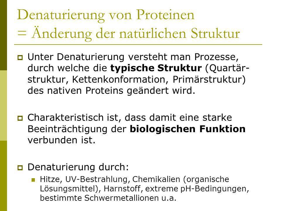 Denaturierung von Proteinen = Änderung der natürlichen Struktur Unter Denaturierung versteht man Prozesse, durch welche die typische Struktur (Quartär