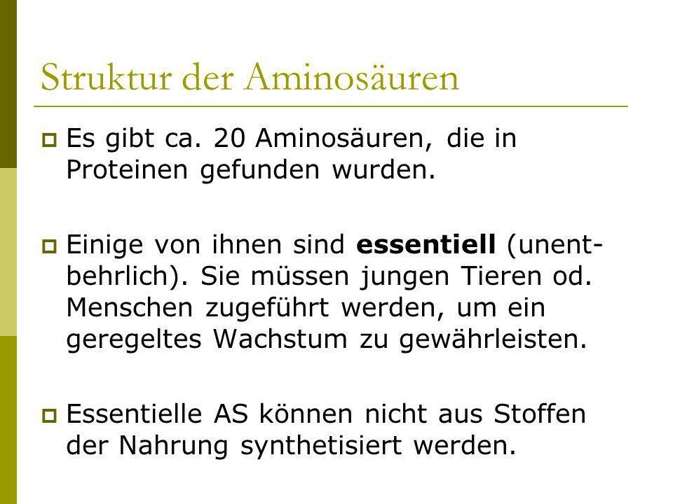Struktur der Aminosäuren Es gibt ca. 20 Aminosäuren, die in Proteinen gefunden wurden. Einige von ihnen sind essentiell (unent- behrlich). Sie müssen