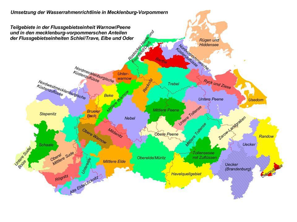 Ablaufstruktur zur Umsetzung der Wasserrahmenrichtlinie in Mecklenburg-Vorpommern - Flussgebietseinheit Warnow/Peene - Umweltministerium Arbeitskreise (Staatliche Ämter für Umwelt und Natur, Ämter für Landwirtschaft, Landkreise, Ämter, ggf.