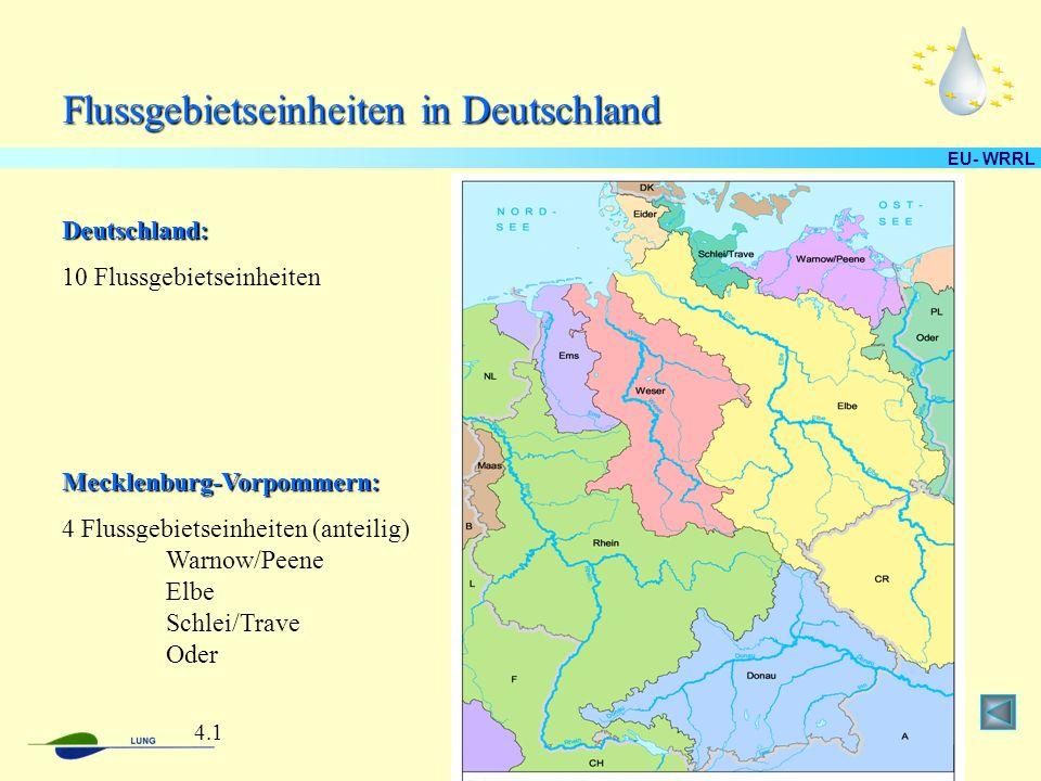 EU- WRRL Flussgebietseinheiten in Deutschland Deutschland: 10 Flussgebietseinheiten Mecklenburg-Vorpommern: 4 Flussgebietseinheiten (anteilig) Warnow/Peene Elbe Schlei/Trave Oder 4.1