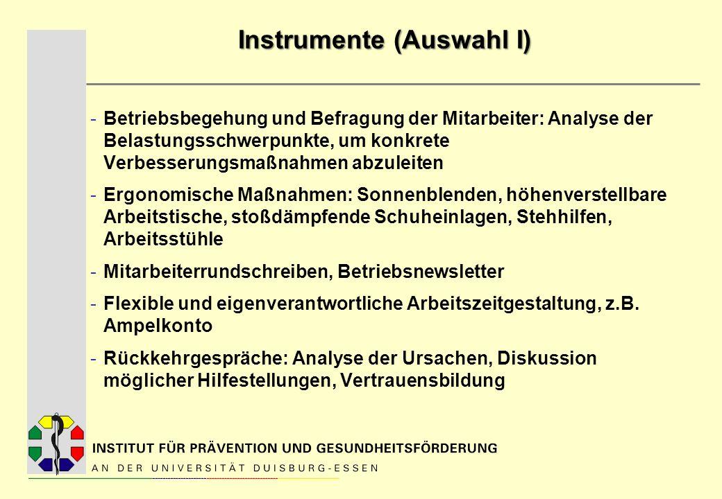 Instrumente (Auswahl I) -Betriebsbegehung und Befragung der Mitarbeiter: Analyse der Belastungsschwerpunkte, um konkrete Verbesserungsmaßnahmen abzule