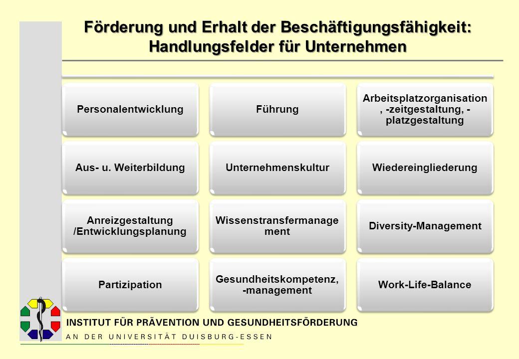 Förderung und Erhalt der Beschäftigungsfähigkeit: Handlungsfelder für Unternehmen PersonalentwicklungAus- u. Weiterbildung Anreizgestaltung /Entwicklu