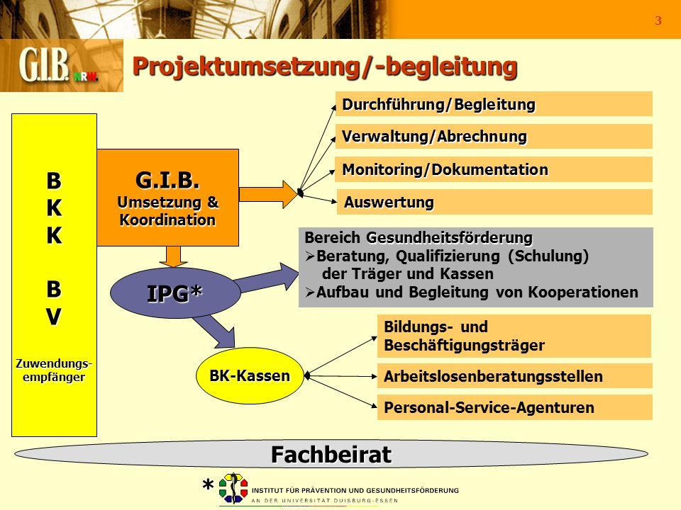 3 Projektumsetzung/-begleitung BKKBVZuwendungs-empfänger BK-Kassen Personal-Service-Agenturen Arbeitslosenberatungsstellen Bildungs- und Beschäftigung