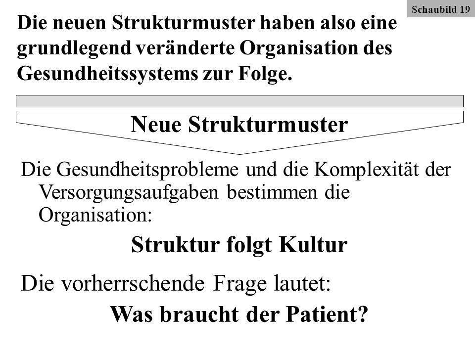 Die neuen Strukturmuster haben also eine grundlegend veränderte Organisation des Gesundheitssystems zur Folge.