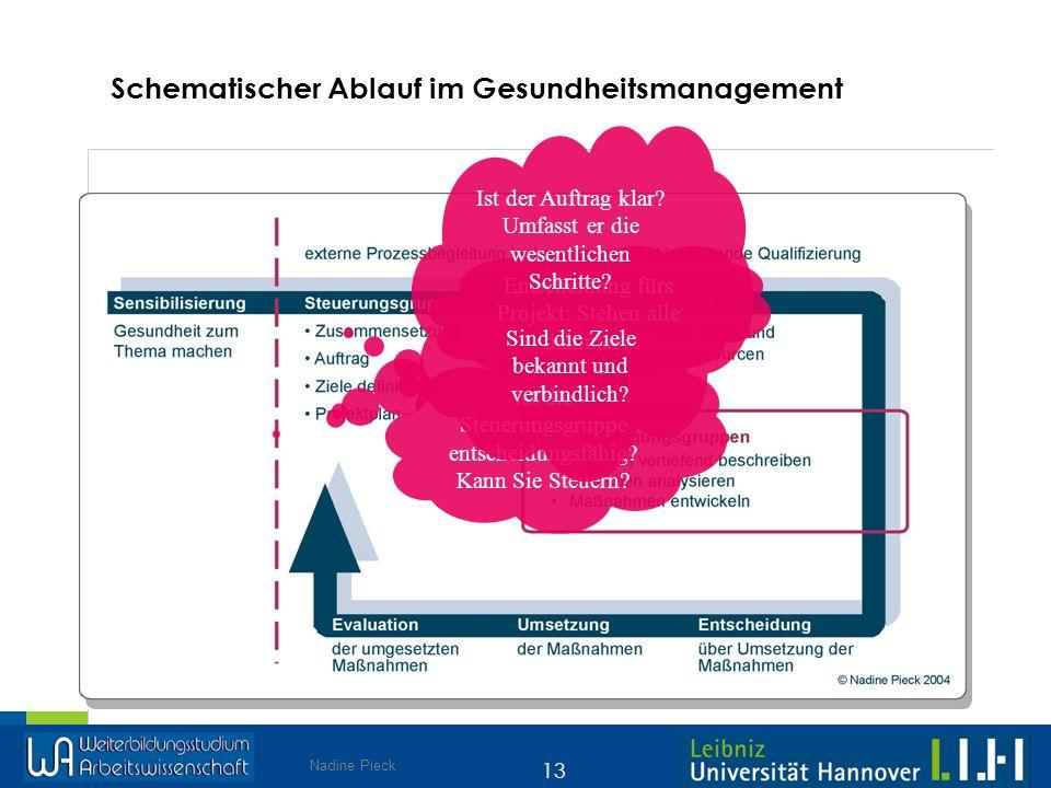 Nadine Pieck 13 Schematischer Ablauf im Gesundheitsmanagement Ist die Steuerungsgruppe entscheidungsfähig? Kann Sie Steuern? Entscheidung fürs Projekt