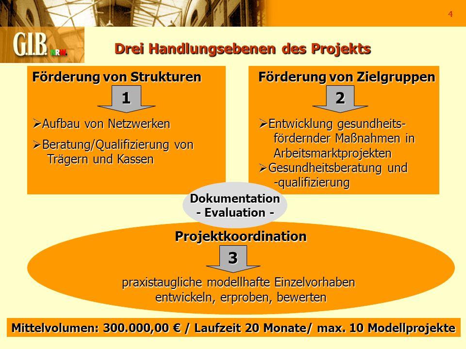 4 Drei Handlungsebenen des Projekts Drei Handlungsebenen des Projekts Projektkoordination praxistaugliche modellhafte Einzelvorhaben entwickeln, erpro