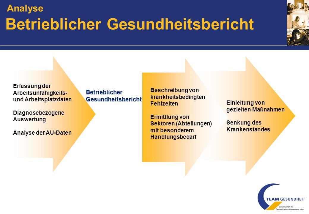 Arbeitskreis Gesundheit Evaluation aller Maßnahmen Gesamtbetriebliche Grundlageanalyse Programm AnalyseIntervention G esundheitszirkel A rbeitsplatzpr