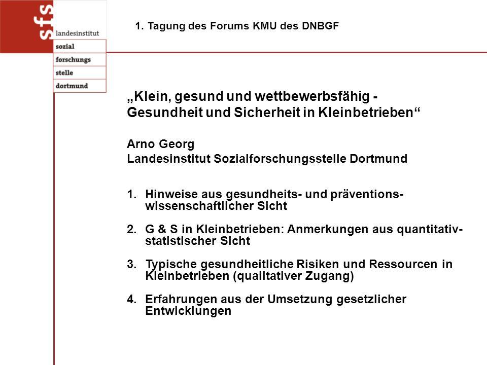 1.Hinweise aus gesundheits- und präventions- wissenschaftlicher Sicht 2.G & S in Kleinbetrieben: Anmerkungen aus quantitativ- statistischer Sicht 3.Ty