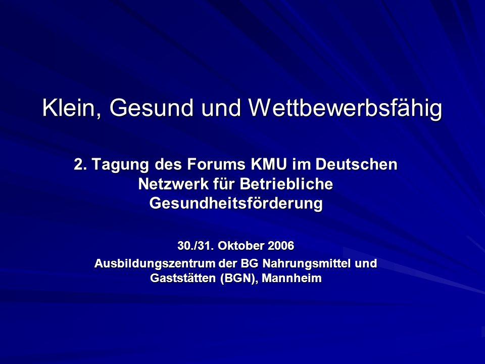 Klein, Gesund und Wettbewerbsfähig 2. Tagung des Forums KMU im Deutschen Netzwerk für Betriebliche Gesundheitsförderung 30./31. Oktober 2006 Ausbildun