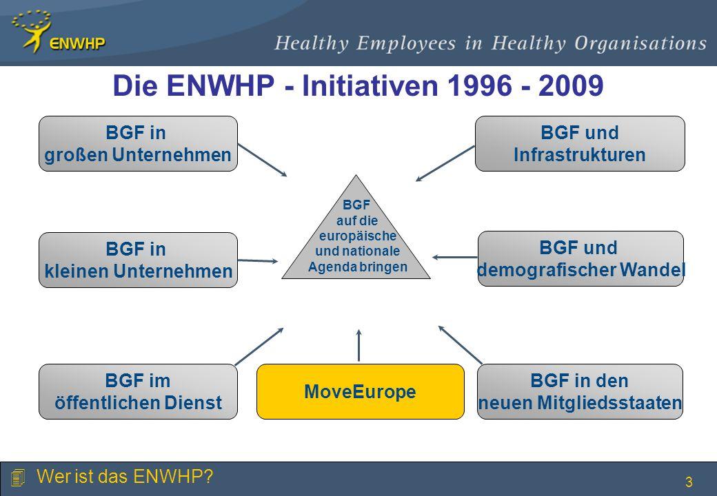 3 Die ENWHP - Initiativen 1996 - 2009 BGF in großen Unternehmen BGF in kleinen Unternehmen BGF im öffentlichen Dienst BGF und Infrastrukturen BGF und