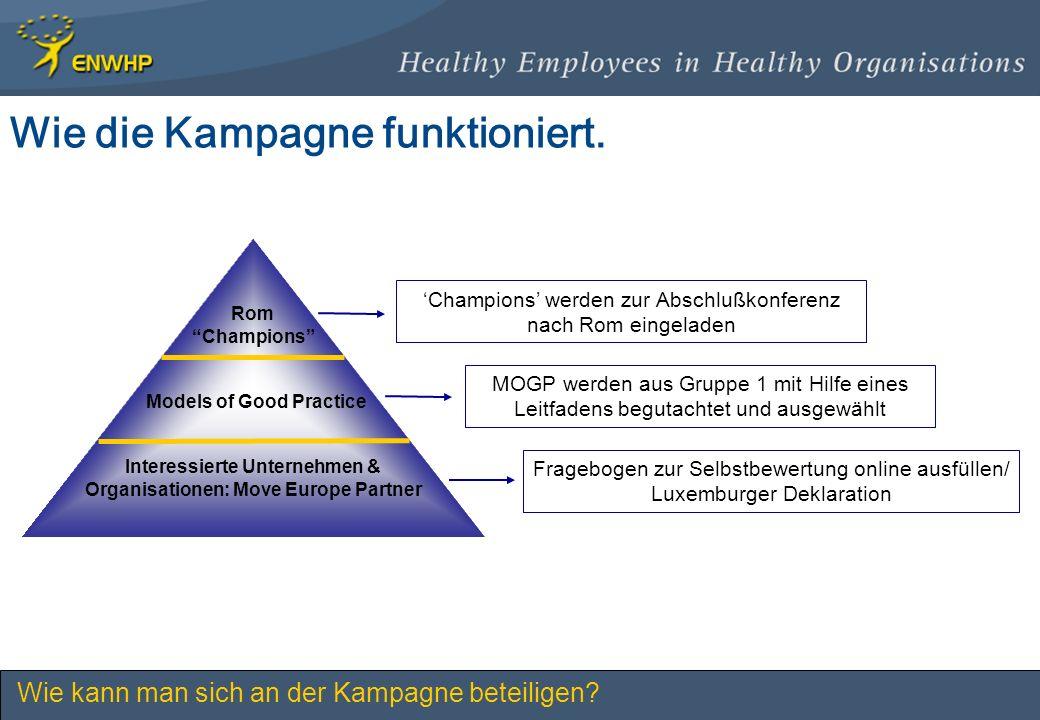 Wie die Kampagne funktioniert. Interessierte Unternehmen & Organisationen: Move Europe Partner Models of Good Practice Rom Champions Fragebogen zur Se