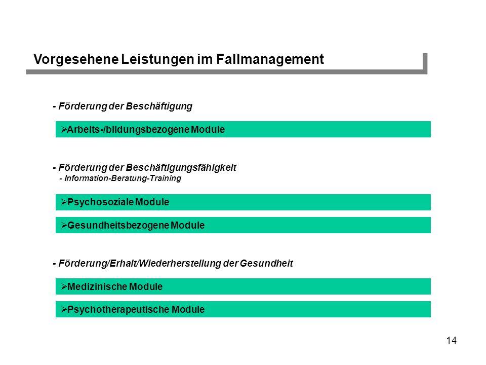 14 Vorgesehene Leistungen im Fallmanagement - Förderung der Beschäftigung Arbeits-/bildungsbezogene Module - Förderung der Beschäftigungsfähigkeit - I