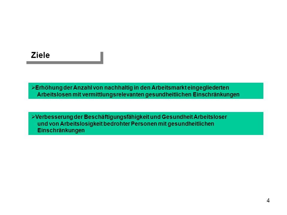 Maßnahmen Entwicklung von spezifischen innovativen Angebotsmodulen Organisation eines strukturierten Eingliederungsmanagements mit Arbeitgeberservice Einbindung einer externen Evaluation Einsatz eines ganzheitlichen beruflich-sozialen Fallmanagements mit differenzierter Eingangsdiagnostik 5 Durchführung eines Arbeitsplatzerhaltungsmanagements