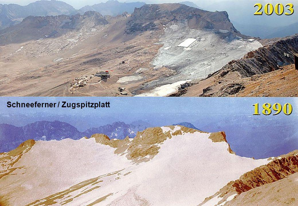 24 Gletscher - Zugspitzplatt Schneeferner / Zugspitzplatt
