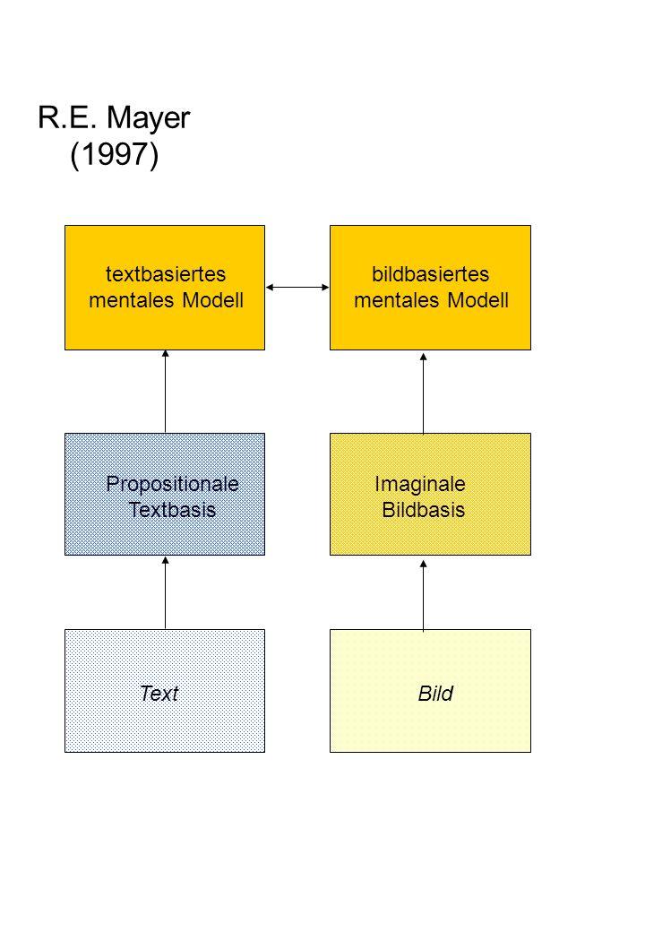 propositionale Repräsentation mentales Modell Textoberflächen- repräsentation visuelle Wahrnehmung / Vorstellung Text Bild / Diagramm Modell- konstruktion Modell- inspektion konzeptuelle Organisation piktoriale Organisation verbale Organisation semantische Verarbeitung thematische Selektion subsemantische Verarbeitung Wahrnehmung Analyse von Symbolstrukturen Abbildung analoger Strukuren