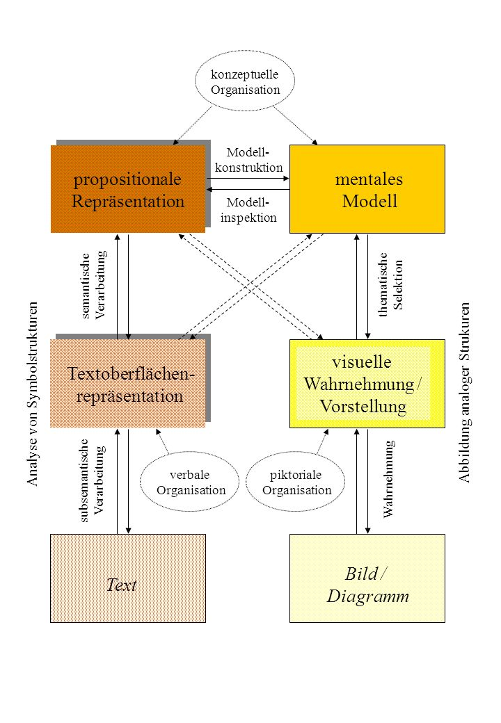 propositionale Repräsentation mentales Modell visueller Text Bild / Diagramm auditiver Text Geräusche / Musik auditive Textoberflächen- repräsentation auditive Wahrnehmung / Vorstellung visuelle Textoberflächen- repräsentation visuelle Wahrnehmung / Vorstellung Visuelles AG Auditives AG