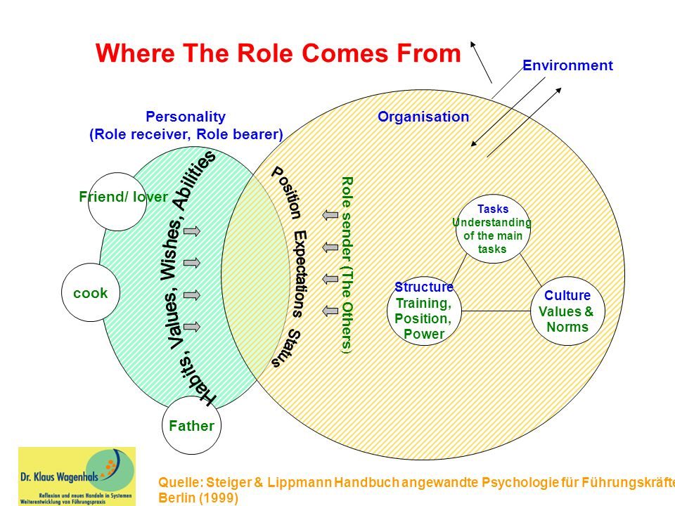 cook Father Personality (Role receiver, Role bearer) Organisation Tasks Understanding of the main tasks Culture Values & Norms Structure Training, Position, Power Role sender (The Others ) Environment Where The Role Comes From Quelle: Steiger & Lippmann Handbuch angewandte Psychologie für Führungskräfte Berlin (1999) Friend/ lover