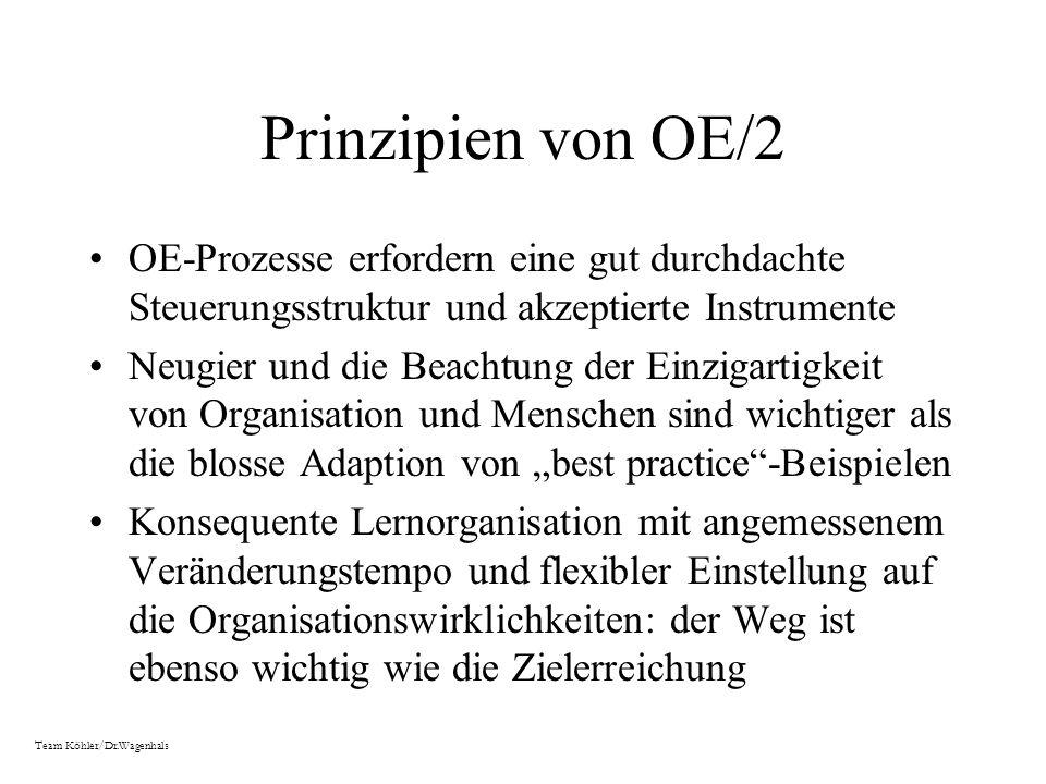 Prinzipien von OE/2 OE-Prozesse erfordern eine gut durchdachte Steuerungsstruktur und akzeptierte Instrumente Neugier und die Beachtung der Einzigarti