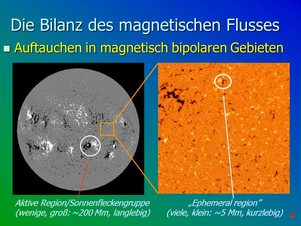 Die Bilanz des magnetischen Flusses n Auftauchen in magnetisch bipolaren Gebieten Aktive Region/Sonnenfleckengruppe (wenige, groß: ~200 Mm, langlebig)