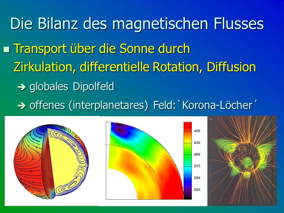 Die Bilanz des magnetischen Flusses n Transport über die Sonne durch Zirkulation, differentielle Rotation, Diffusion globales Dipolfeld globales Dipol