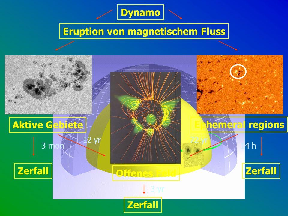 Eruption von magnetischem Fluss Aktive Gebiete Ephemeral regions Offenes Feld Zerfall Dynamo 14 h 72 yr12 yr 3 mon 3 yr