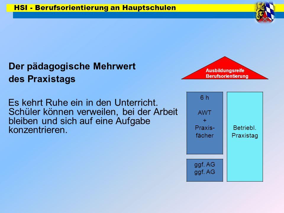 HSI - Berufsorientierung an Hauptschulen 6 h AWT + Praxis- fächer Ausbildungsreife Berufsorientierung Betriebl. Praxistag ggf. AG Der pädagogische Meh