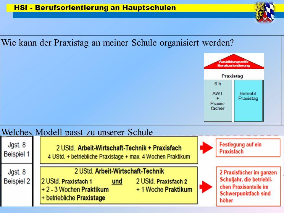 HSI - Berufsorientierung an Hauptschulen Wie kann der Praxistag an meiner Schule organisiert werden? Welches Modell passt zu unserer Schule