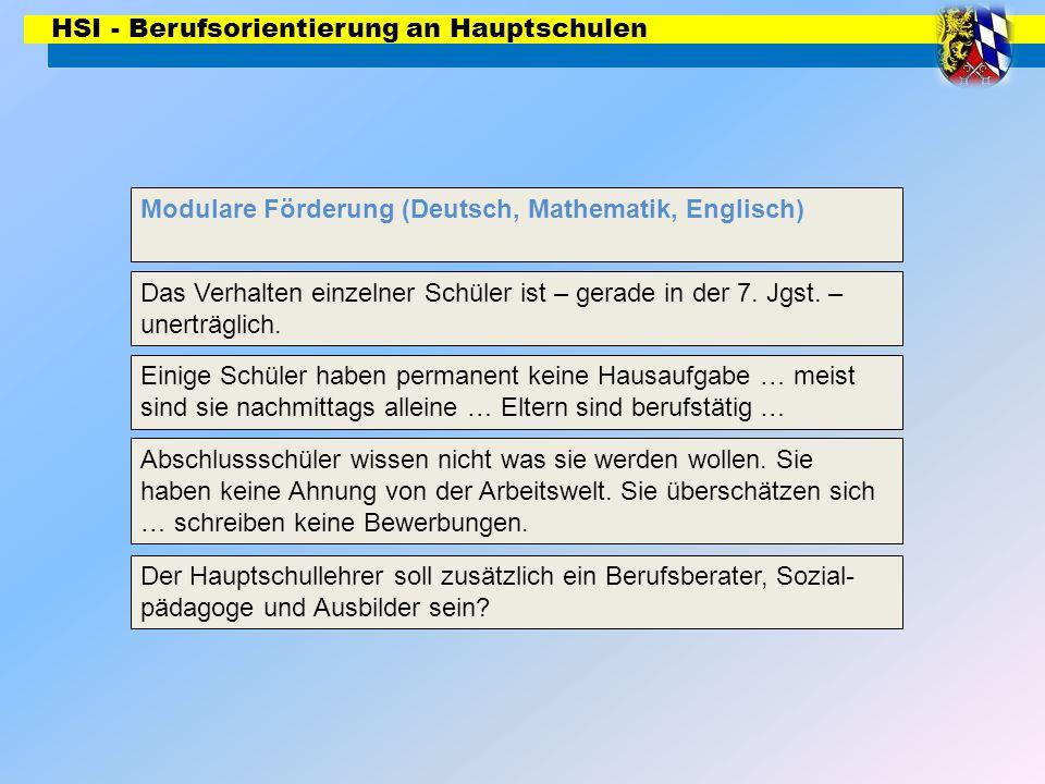 HSI - Berufsorientierung an Hauptschulen Modulare Förderung (Deutsch, Mathematik, Englisch) Das Verhalten einzelner Schüler ist – gerade in der 7. Jgs