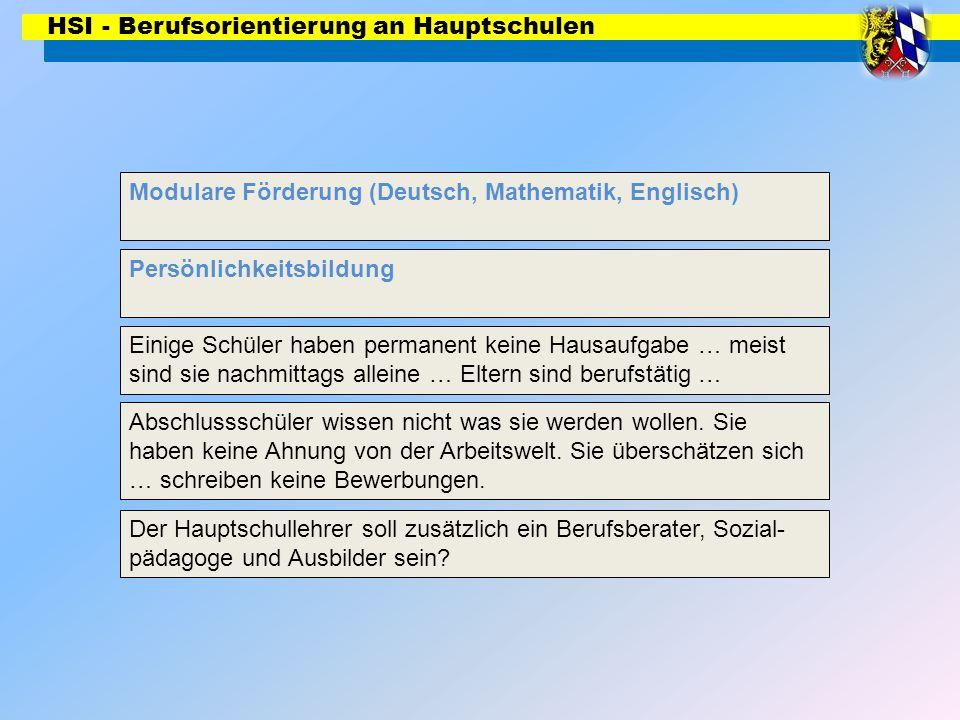 HSI - Berufsorientierung an Hauptschulen Modulare Förderung (Deutsch, Mathematik, Englisch) Persönlichkeitsbildung Ganztagsschule Abschlussschüler wissen nicht was sie werden wollen.