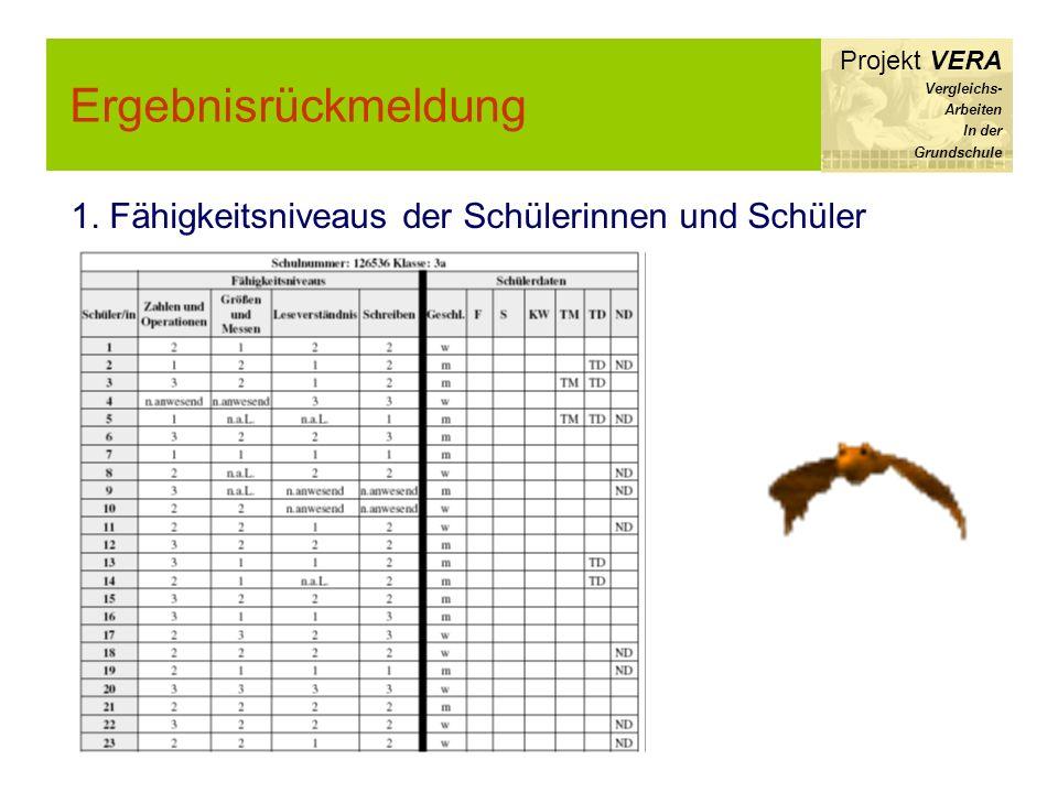 Ergebnisrückmeldung Projekt VERA Vergleichs- Arbeiten In der Grundschule 1. Fähigkeitsniveaus der Schülerinnen und Schüler