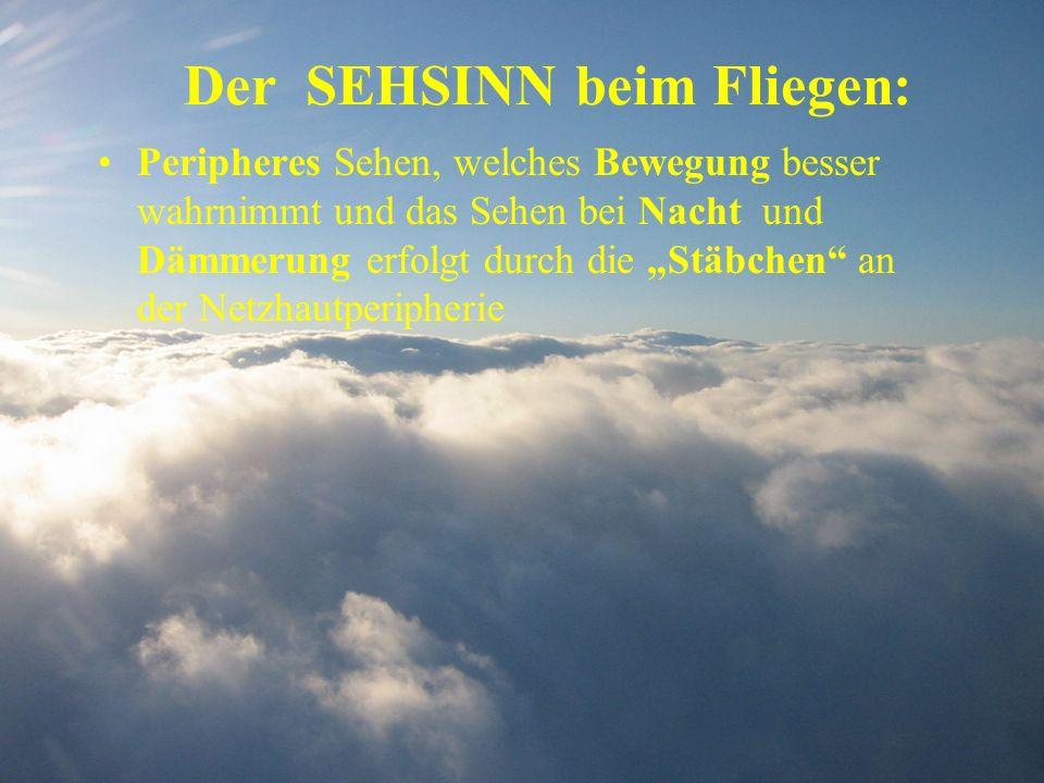 Der SEHSINN beim Fliegen: Peripheres Sehen, welches Bewegung besser wahrnimmt und das Sehen bei Nacht und Dämmerung erfolgt durch die Stäbchen an der