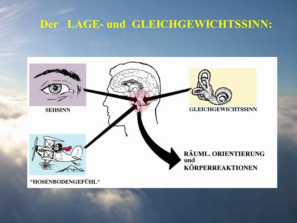 Der LAGE- und GLEICHGEWICHTSSINN: